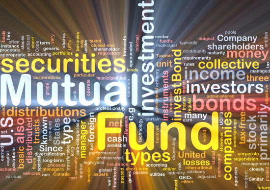 What is Mutual Fund Expense Ratio?